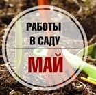 Майские работы в саду - Прямой эфир