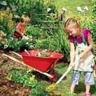 Детский огород. Чем заняться детям на даче?