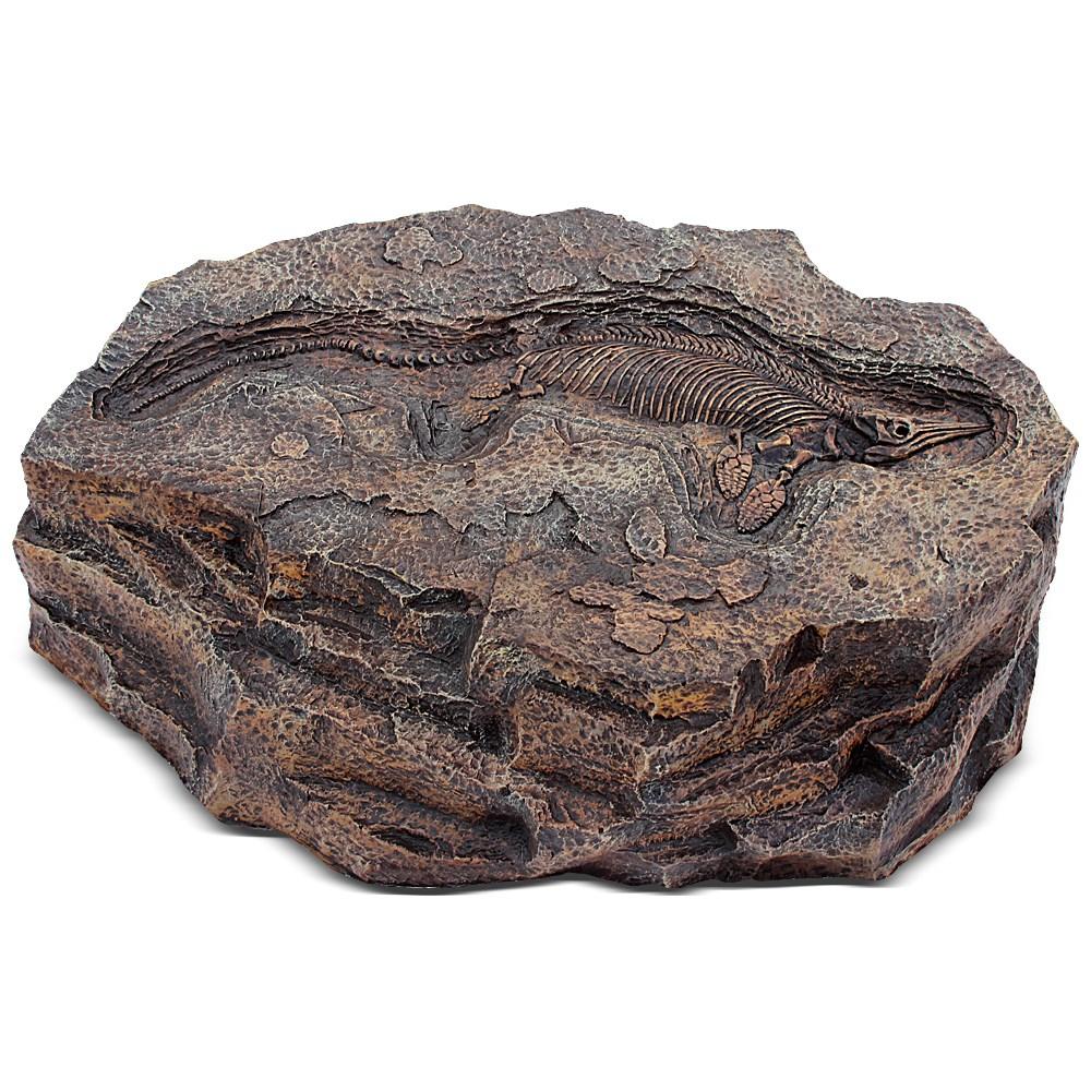 Декоративный камень с окаменелостью динозавра