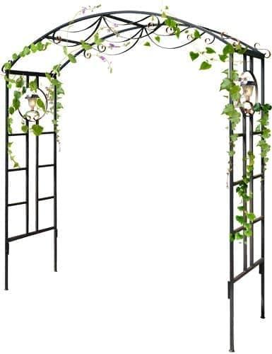 Садовая арка для винограда