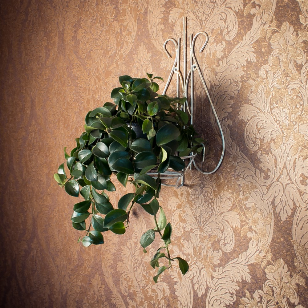 Настенная подставка под цветок - фото 17234