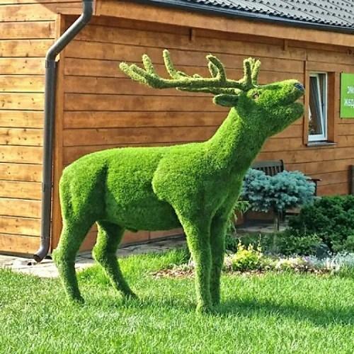 Топиарная фигура олень для дачи и загородного дома