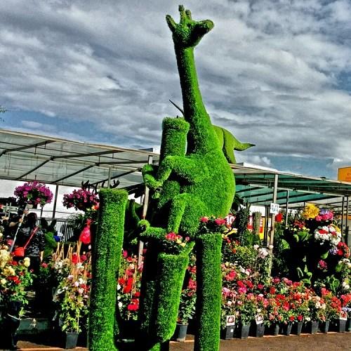 Топиарная фигура Жираф для парковой зоны