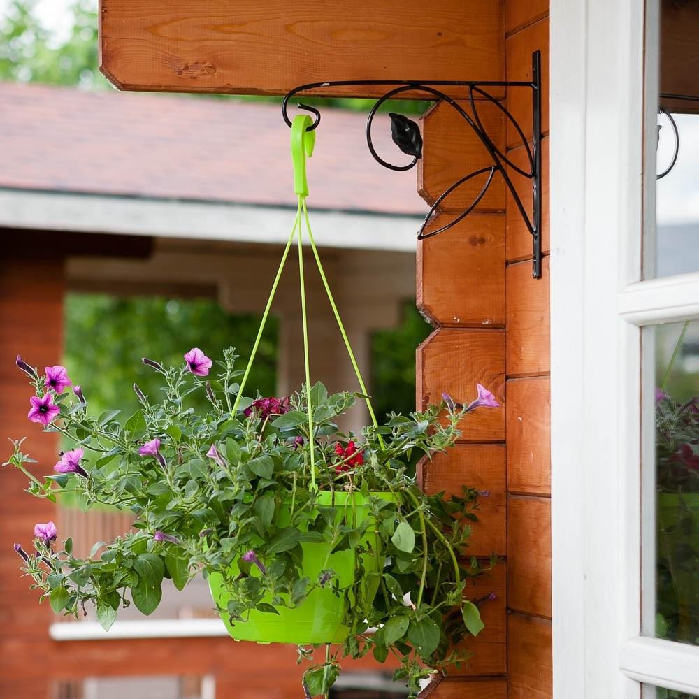 Металлический подвес для растений