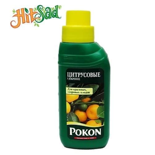 Удобрение для цитрусовых POKON 250 мл - фото 4862