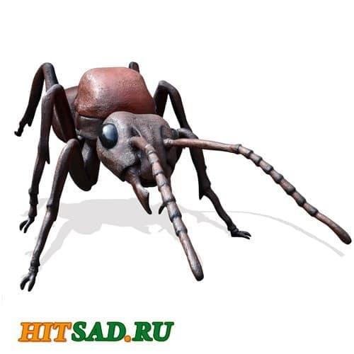 Гигантский муравей садовая фигура