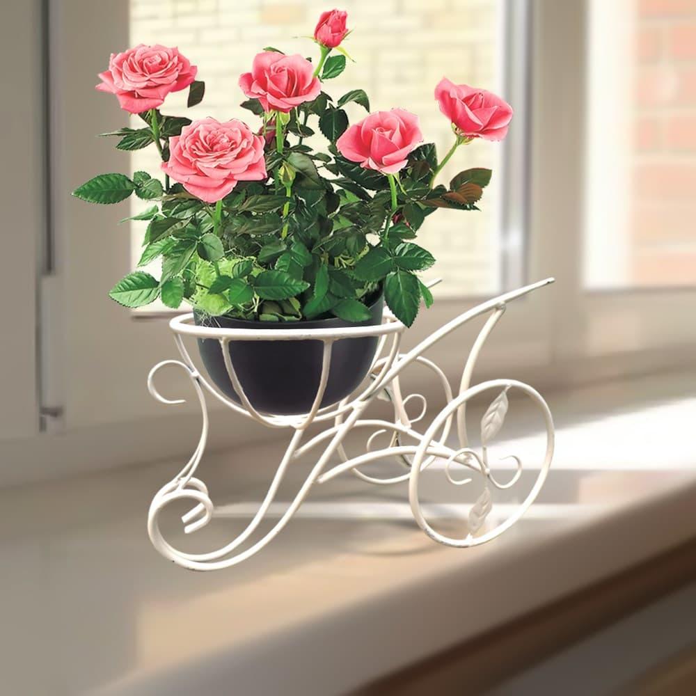 Цветы в подставке