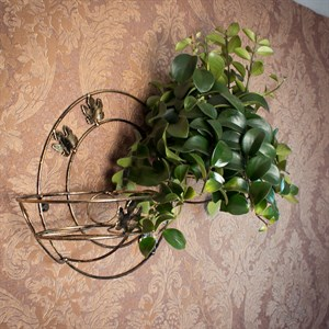 Подставка на стену под цветы