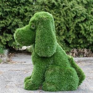Топиарная фигура собачка купить в  интернет магазине