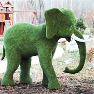 Топиарная фигура Слон для парковой зоны