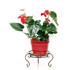 Подставка для цветка 25-013