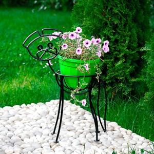 Щенок цветочница садовая