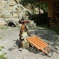 Садовая фигура веселый Лось U07686 - фото 14536