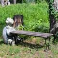 Садовая лавочка фото