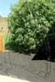 Арка садовая - фото 14732