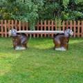 Фото скамейки для сада