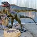 Дейноних динозавр - фото 15674