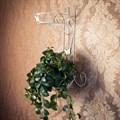 Подставка на стену для цветов - фото 17217