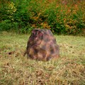 Камень на люк за 2070 руб.