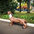Дачная лавка собака