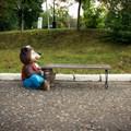 Парковая скамейка медвежонок