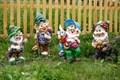 Гномики в саду