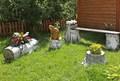 Садовый декор Береза