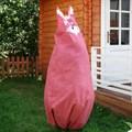 Чехол кот
