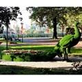 Садово-парковая фигура павлин