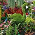 Топиарная фигура Фламинго для парка
