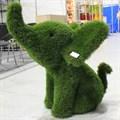 Топиарная фигура Слоник для парковой зоны