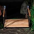 Мост в саду