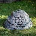 Декоративный камень с глазами