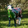 Объемная корова в интернет-магазине