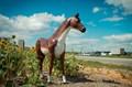 Садовая фигура Конь большой - фото 31861