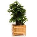 Вазон деревянный для цветов