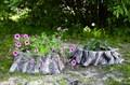 Садовые кашпо для цветов