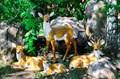 Садовые фигуры олени