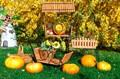 Тележка садовая 59-362 - фото 39574