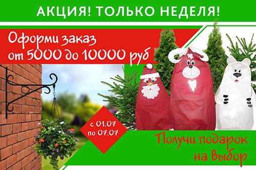 Подарки от 5000 до 1000 руб.