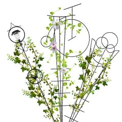 Вертикальное озеленение и декор