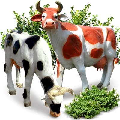 Коровы - садовые фигуры