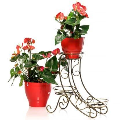 Подставки для цветов с ускоренной доставкой