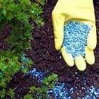 Как выбрать осеннее удобрение  для грунта?