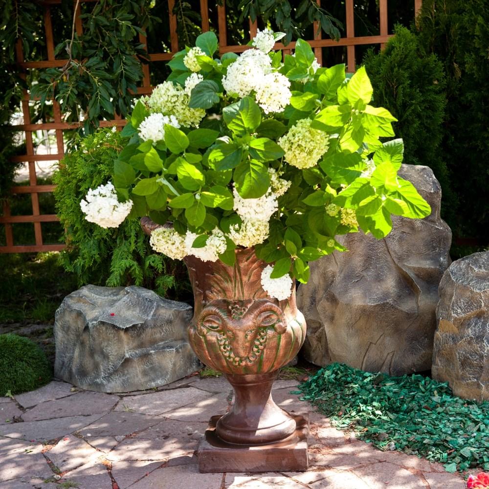 Какое кашпо подходит для цветов