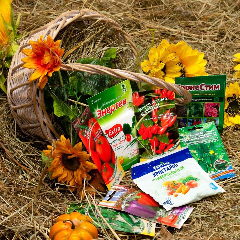 семена для огорода на подоконнике купить