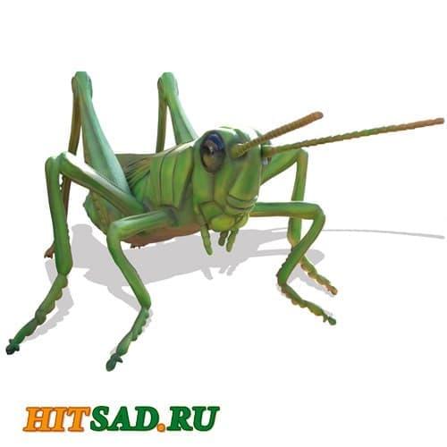 Огромное насекомое Кузнечик