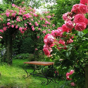 Садовая лавка цена 2700 руб.