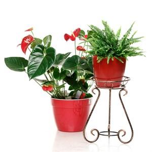 Подставка для цветка