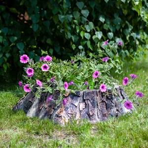 Кашпо для цветов за 2430 руб.